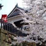 真田丸を体感できる長野県上田市のおすすめ観光スポット3選